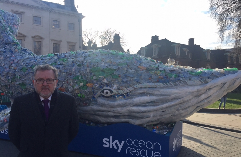 David has backed the Pass on Plastic campaign